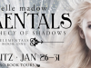 The Prophecy of Shadows by MichelleMadow