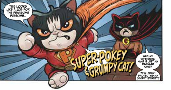 Super Pokey and Grumpy Cat