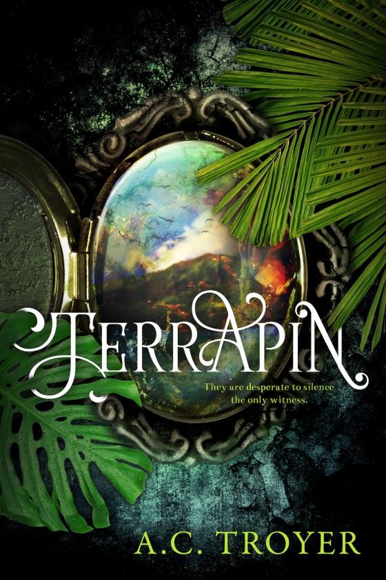 TERRAPIN Amazon