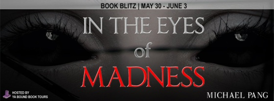 in the eyes of madness blitz banner