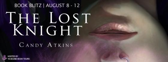The Lost Knight blitz banner