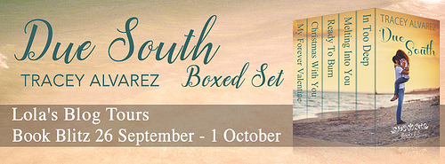 Due South Boxed Set banner