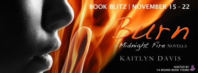 burn-blitz-banner