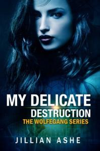 my-delicate-destruction-1