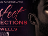 Perfect Imperfections by J. & L. Wells