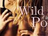 Wild Poppy by VivianWinslow