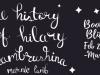 The History of Hilary Hambrushina by MarnieLamb