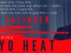 Tokyo Heat by A.M.Salinger